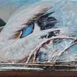 Canard colvert 12 po x 24 po Acrylique sur toile