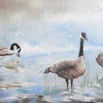 Bernaches en hiver 15 po x 30po Acrylique sur toile