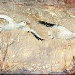Collection oies blanches 6 po x 24po Acrylique sur toile